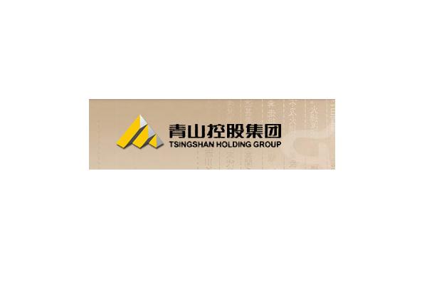 青山控股集团有限公司